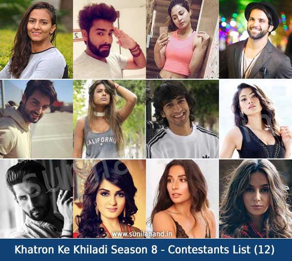 khatron ke khiladi season 8 contestants list12